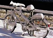 Herrenlose Fahrräder können in Münster online gemeldet werden.
