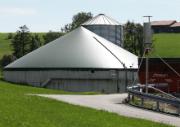 Im virtuellen Verbund ist die Bereitstellung von Regelleistung eine lohnende Option für Bioenergieanlagen.
