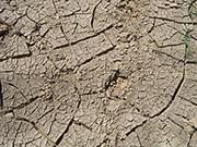 Der Weltklimavertrag soll die Erderwärmung möglichst auf unter 1,5 Grad Celsius begrenzen.