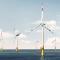 Der EnBW-Windpark Baltic 1 ist der erste kommerzielle Offshore-Windpark Deutschlands.