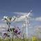 Der Regionalplan Energie soll die Entwicklung von Windrädern auf Flächen jenseits von Naturschutzgebieten lenken.