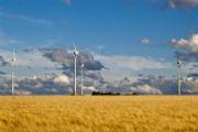 Windpark Ebersheim: Ende 2016 drehten sich in Rheinland-Pfalz über 1.600 Windräder.