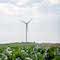 E.ON-Inselnetz: Die Ortschaft Simris in Südschweden wird ausschließlich mit erneuerbaren Energien versorgt.
