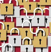 Fragen des Datenschutzes im Netzwerk klären.