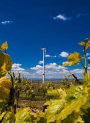 Am Standort Framersheim befinden sich zwei der insgesamt vier Anlagen des neu erworbenen Windparks der Stadtwerke Tübingen.