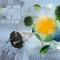 Die Untersuchung neuer Rollen und Akteure des künftigen Energiesystems waren ein Schwerpunkt der Helmholtz-Allianz ENERGY-TRANS.