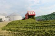 Laut Bundesregierung steuert die Bioenergie 40 Prozent zur Vermeidung von Treibhausgasen durch erneuerbare Energien bei.