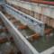 Über die Becken des neuen Fischpasses am Wehr bei der Talmühle in Neubulach können die Fische die Nagold bergauf wandern.