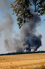 Sachsen informiert via App über die aktuelle amtliche Waldbrandgefahrenstufe.