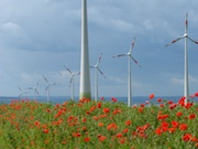 Onshore-Windkraft ist der größte Erzeuger von Ökostrom.