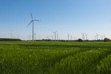 Die Windkraft treibt den Anteil des grünen Stroms im Netz von WEMAG maßgeblich voran.