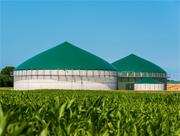Smarte Bioenergie setzt voraus, dass sich Konsummuster und Zielgrößen verändern, Energie eingespart wird und der Anspruch an Nachhaltigkeit steigt.