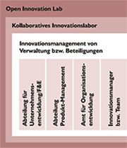 Organisationsoptionen für das Innovationsmanagement.