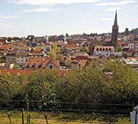 Kreis Bad Dürkheim ist vor Trojanern gut geschützt.