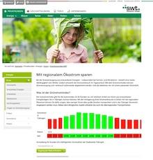 Der GrünstromIndex der Stadtwerke Tübingen steckt aktuell in der Pilotphase und wird von Testkunden ausführlich erprobt.