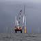 Trianel Windpark Borkum II: VKU sieht Gesetzentwurf der Bundesregierung als Hürde für weitere kommunale Investitionen in Offshore-Wind.