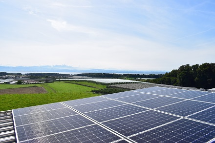 Ökologisch und mit Aussicht: Neue Photovoltaikanlage auf dem Wasserbehälter Friedrichshafen-Raderach.