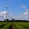 Mehr als 70 Prozent des Strombedarfs im Kreis Borken werden inzwischen durch erneuerbare Energien gedeckt – den größten Anteil daran hat die Windkraft.