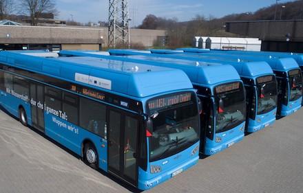 Wasserstoff-Busse der Wuppertaler Stadtwerke: Der Kraftstoff kommt aus dem Müllheizkraftwerk.