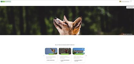 Über das Wildtierportal finden Nutzer detaillierte Informationen zu Wildtieren und der Jagd in Baden-Württemberg sowie Themen aus dem Bereich Wildtierforschung und Wildtier-Monitoring.