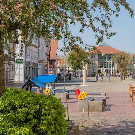 Die niedersächsische Kommune Gifhorn führt das Finanz-Management Infoma newsystem ein.